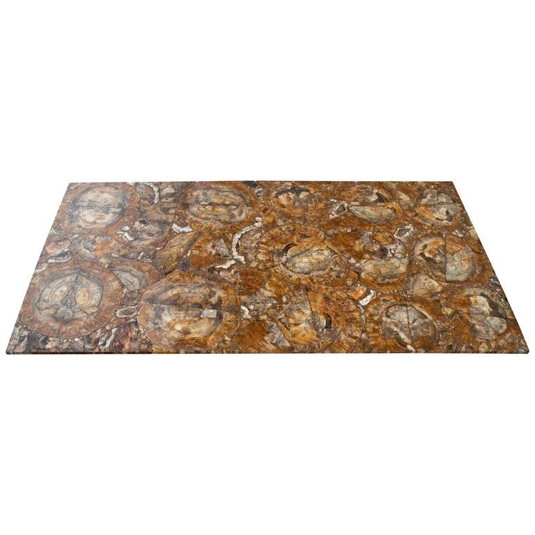 Mesa de Mosaico de Tronco de Árbol Fosilizado